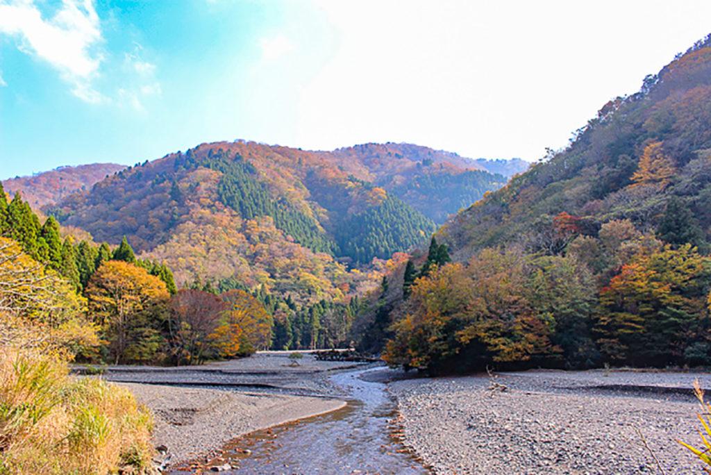 """若狭路""""裏""""センチュリーライド 美浜町新庄"""